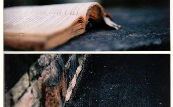 literatue