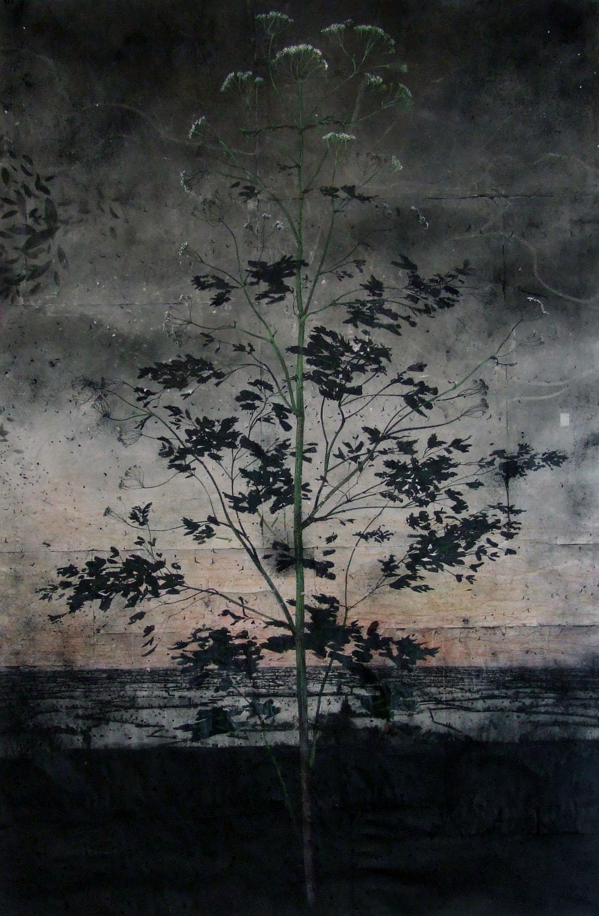 Michael Canning: Drawing II. (2012)